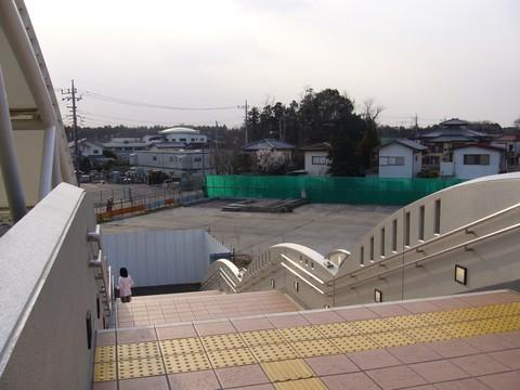 20060401_txmori-1.jpg